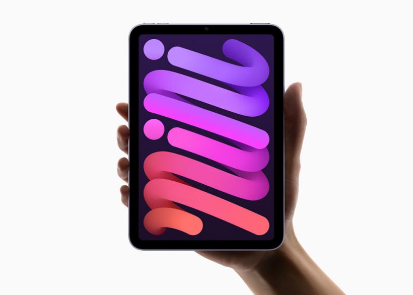 纵向手持 iPad mini。