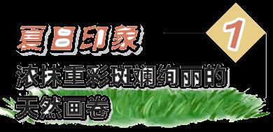 """畅游系列丨漳泽湖湿地——长治人家门口的""""诗与远方"""""""