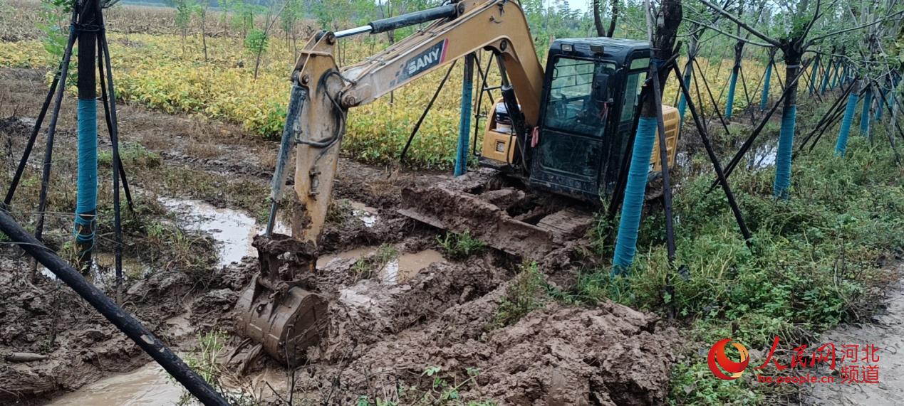 邯郸市鸡泽县开展农田排涝。 人民网 朱鹏涛摄