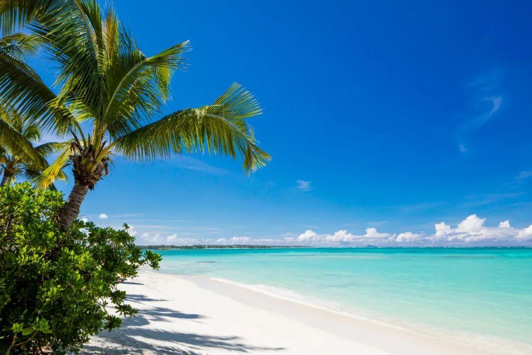 非洲疫苗接种率最高的国家之一 毛里求斯已全岛重新对外开放!
