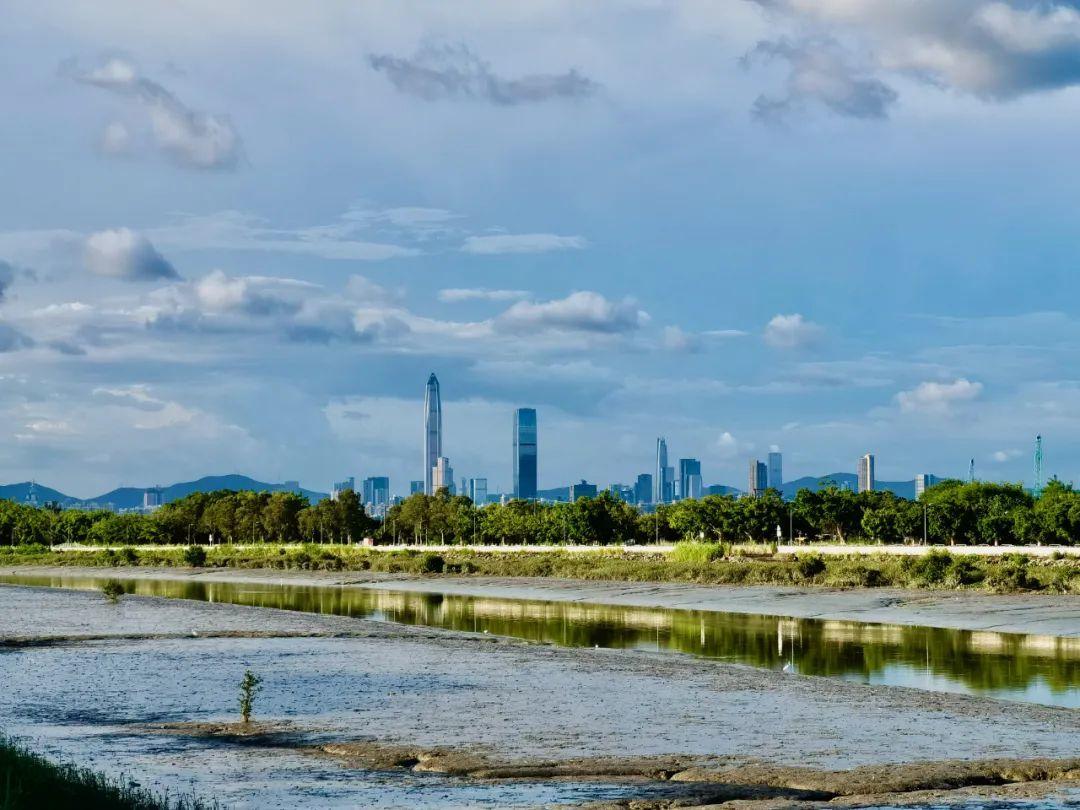 """香港""""北部都会区""""规划推出始末 望成为香港城市空间发展史上的一次战略性改变?"""