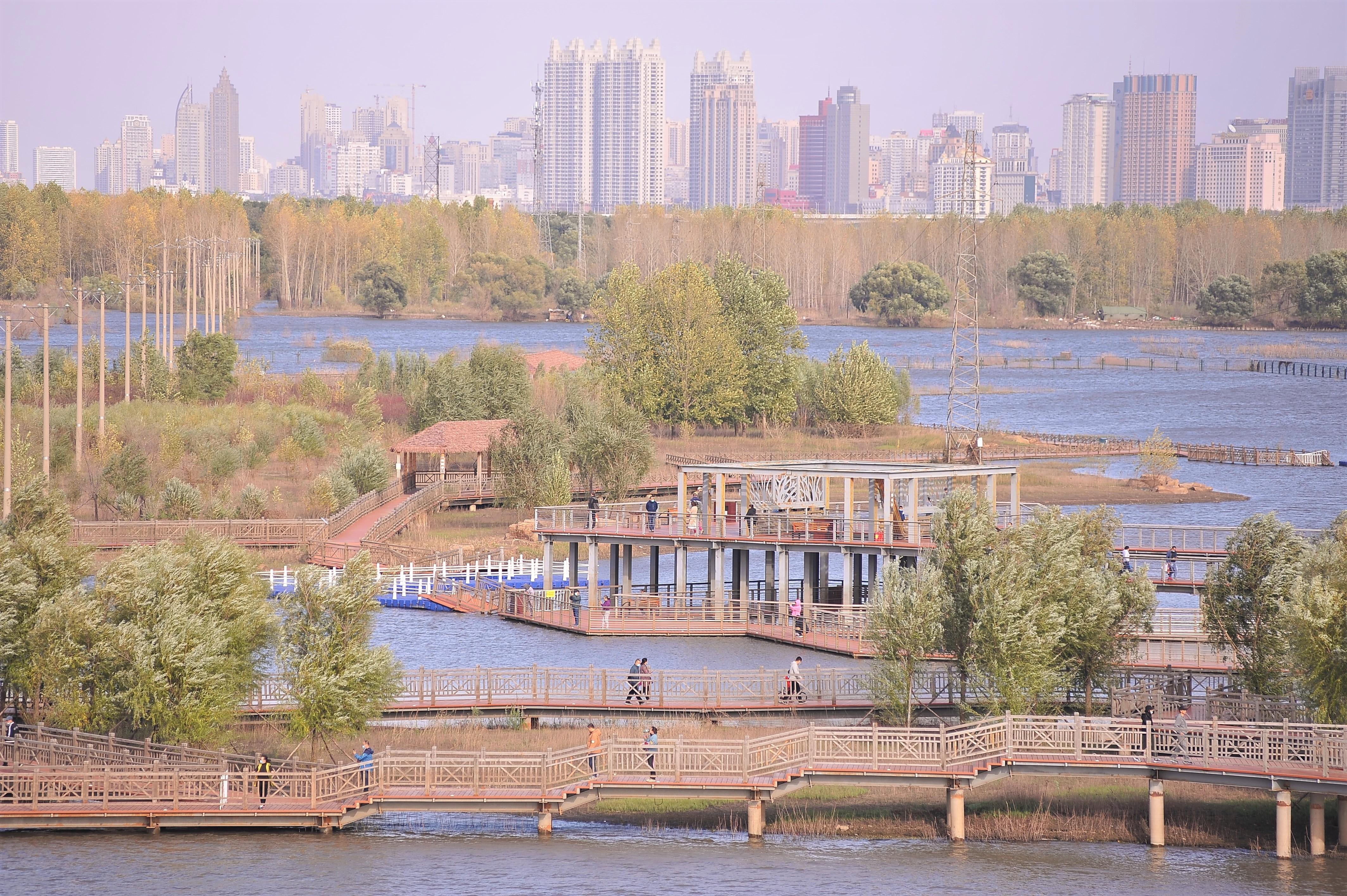 群力外滩湿地,人们走在栈桥上
