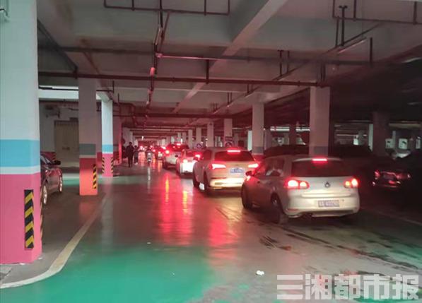 (停车场内等待出行的车辆排起了长队。 虢灿 摄)