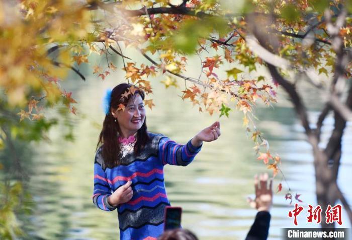 秋色如画,吸引大批市民前来游玩观赏。 张瑶 摄