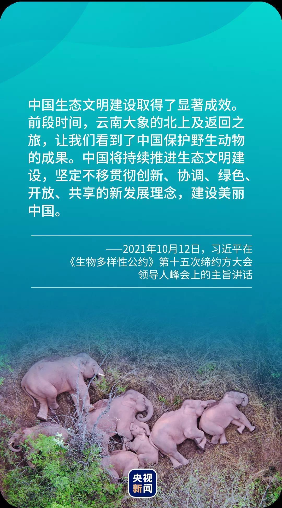 习语典读丨一句古语,读懂中国生态文明理念