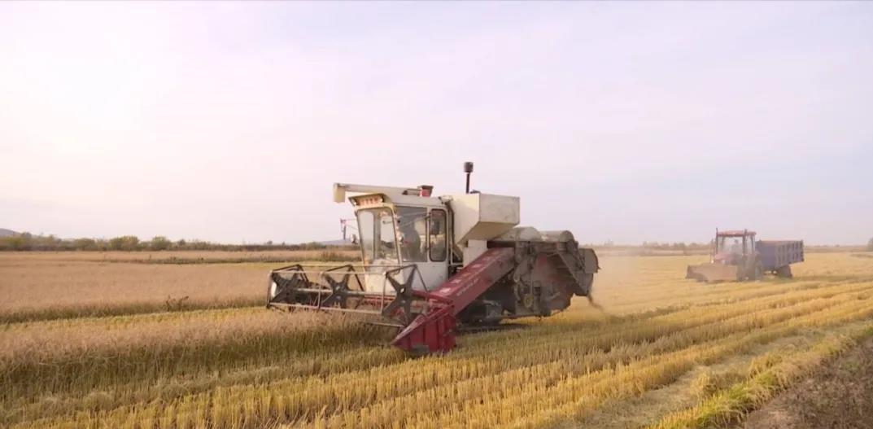 农机在田地里作业