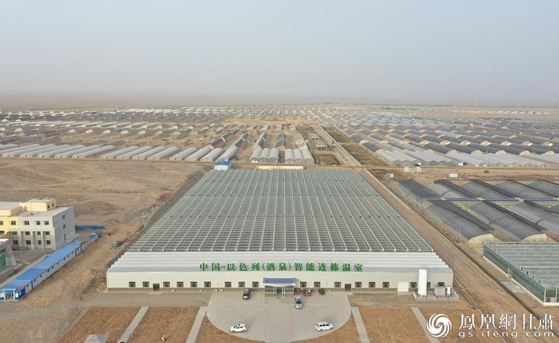中以绿色生态产业园已开工建设高标准日光温室4094座,占地面达14329亩。杨艺锴 摄