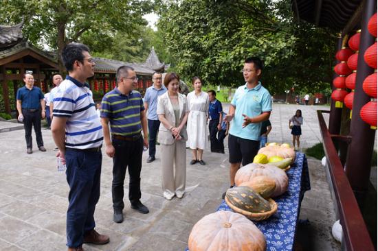 调研生态农业项目湖南鲜达农业有限公司白鳞洲特色果蔬基地