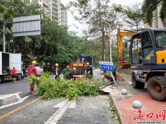 园林环卫工人清理倒伏树枝。(美兰区供图)