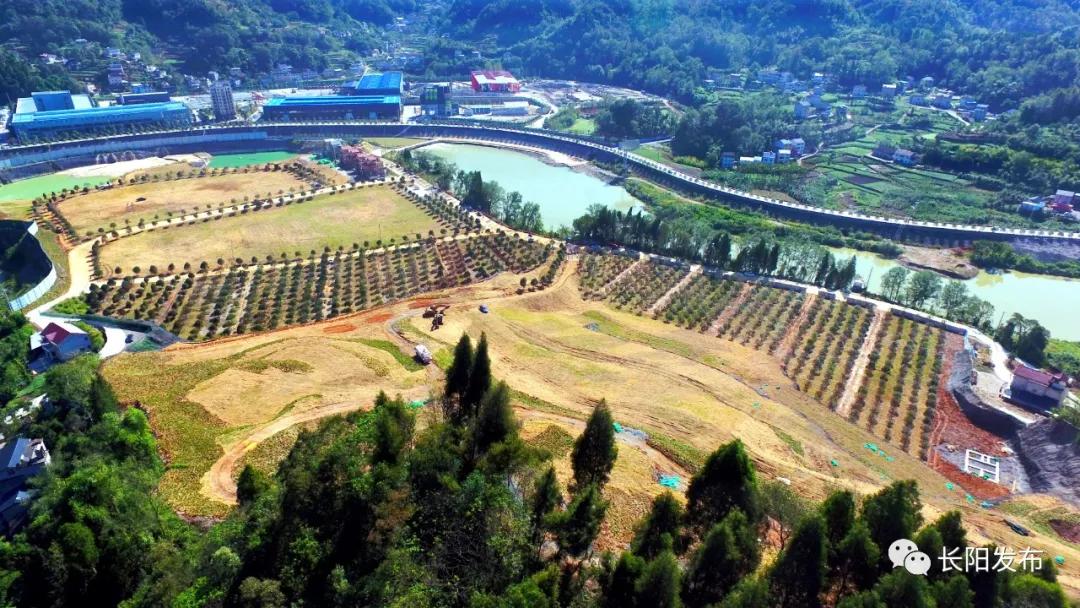 10月12日,长阳县发布的挖山采石区生态修复后的实景图  图片来源:长阳发布