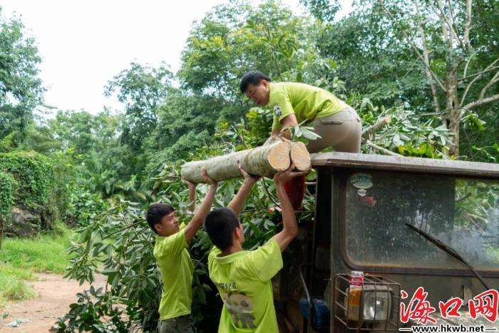 工作人员清理倒伏树木。(景区供图)