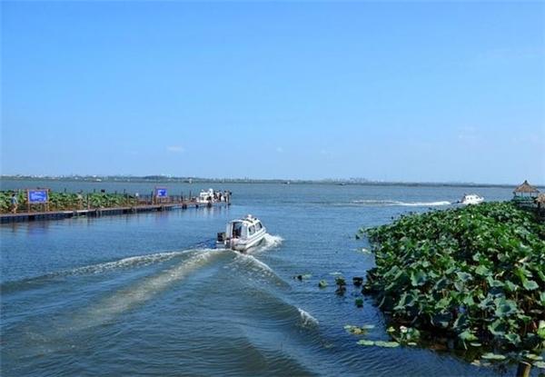 苏州阳澄湖吃大闸蟹的地方在哪里?哪里好?