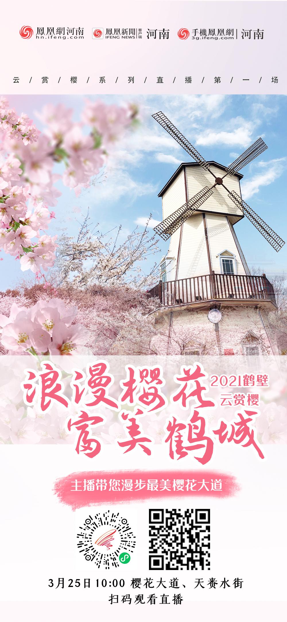 """满城樱花静待君来!2021鹤壁""""云赏樱""""首场直播明日开启"""